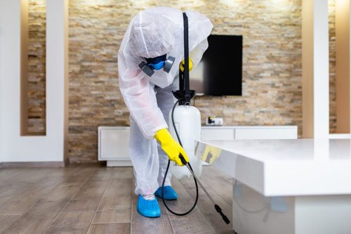 commercial disinfection in houston